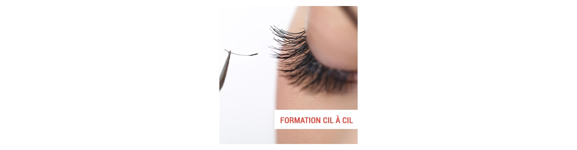 Learning how to improve the aspect of eyebrows & lashes? Come to train